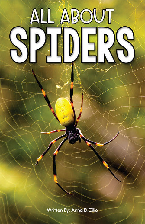 All About Spiders-front cover